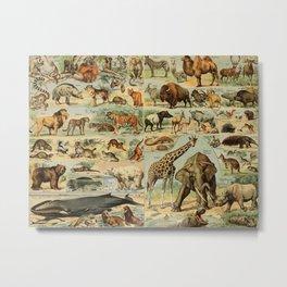 Adolphe Millot - Nouveau Larousse Illustré - Mammifères A (Mammals) (1906) Metal Print