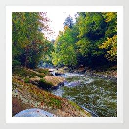 Fall Water Art Print