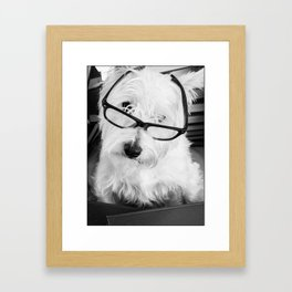 Really? Cute Westie Dog Wearing Glasses Framed Art Print