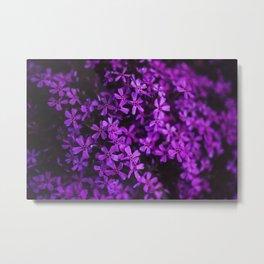 Flowers in Purple, Ultra Violet Metal Print