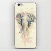 "ellie goulding iPhone & iPod Skins featuring ""Ellie"" by PaintedBunting"
