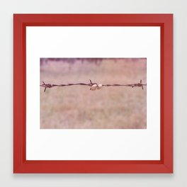 Rusty Love Framed Art Print