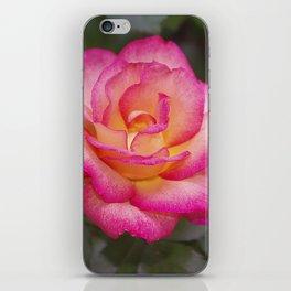 Rainbow Sorbet Rose iPhone Skin
