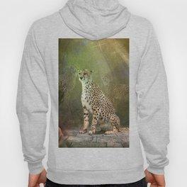 Wonderful leopard Hoody