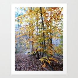 Last Of Autumn Art Print