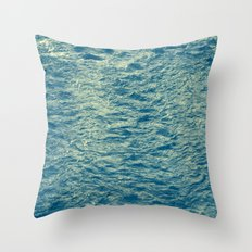 259 Throw Pillow