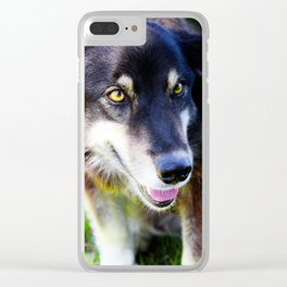 Friendly Pooch Clear iPhone Case
