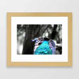 Breathe your own Colors Framed Art Print