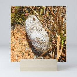 Watercolor Poop, Coyote 01, Windy Gulch, RMNP, Colorado Mini Art Print
