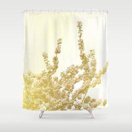 Sunlit Cherry Blossoms - Dreamy Floral Photography - Flower Art Prints, Apparel, Accessories... Shower Curtain