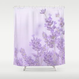 Lovely Lavenders Pastel Purple Background #decor #society6 #buyart Shower Curtain