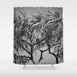 Mahama Lauhala Hala Trees Pandanus Shower Curtain