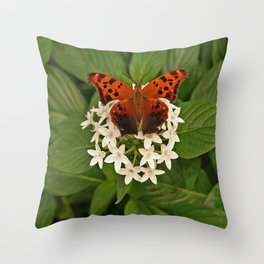 BUTTERFLY CIRCLED BY WHITE FLOWERS Throw Pillow