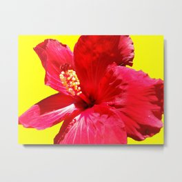 red on the yellow Metal Print