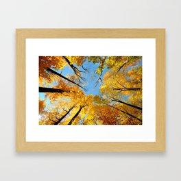 Sky fall Framed Art Print