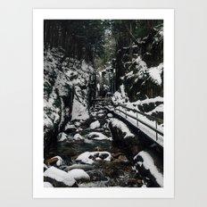WINTER AT FLUME GORGE Art Print
