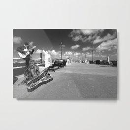 Cornish Buskin  Metal Print