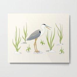 heron of Galapagos Metal Print