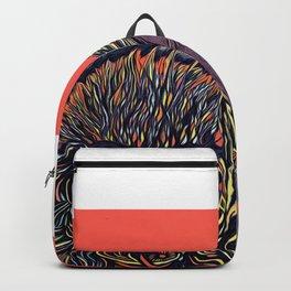 2001 Backpack