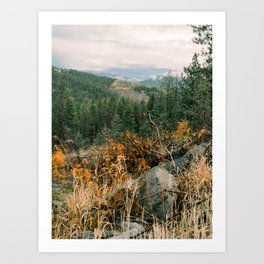 Autumn in a Northwest Forest and Mountains Art Print