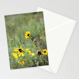 Bonito Stationery Cards