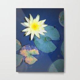 Lily Pad Metal Print