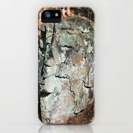 Stone Head iPhone Case
