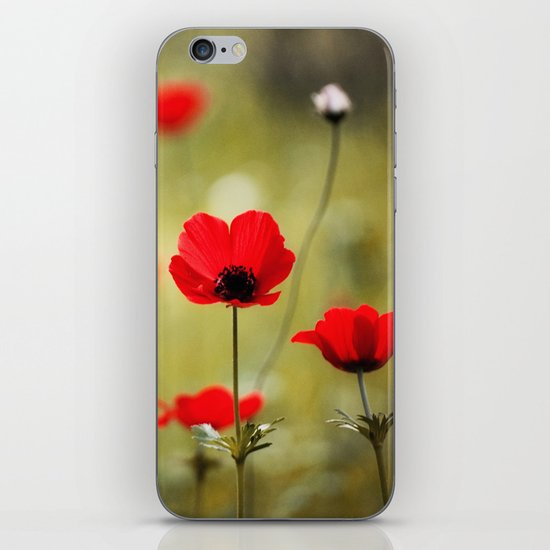 Wild Anemones iPhone & iPod Skin