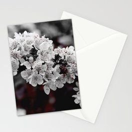 FLOWERS - BLOOM - NATURE - PHOTOGRAPHY Stationery Cards