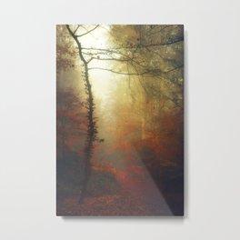 Carmine Path Metal Print