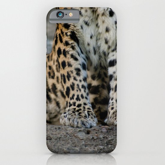 Paws iPhone & iPod Case