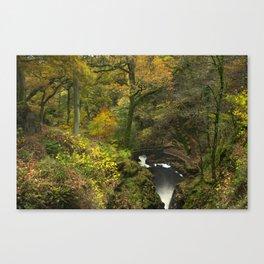 Bridge, steps and Autumnal woodland at Aira Force waterfall. Near Ullswater, Lake District, UK Canvas Print