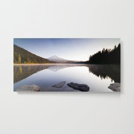 A Trillium Morning Metal Print