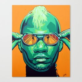 GREEN VELVET Canvas Print