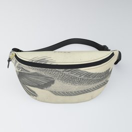 Vintage Print: Zoology Lectures Delivered at the Royal Institution (1807): Piper Fish Fanny Pack