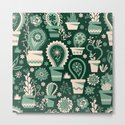 Paisley succulents by camcreative