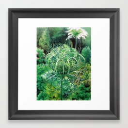 Queen Anne's Lace Bud Framed Art Print