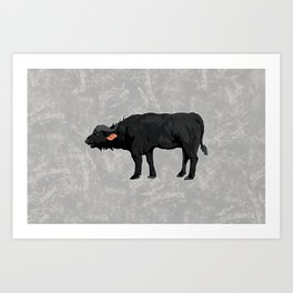 African Cape Buffalo Art Print