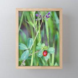 My Lady Framed Mini Art Print