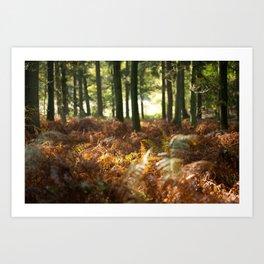 Autumn Forest - Natural Season - Warm Colorful Print - Botanical Tree and Plants- Fern Wall Art Art Print