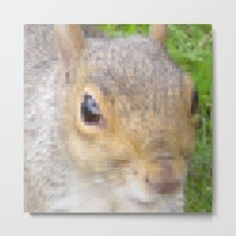 The many faces of Squirrel 2 Metal Print