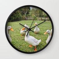 ducks Wall Clocks featuring Ducks by Michelle Frances Deacon