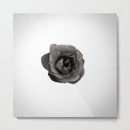 Floral Space Metal Print