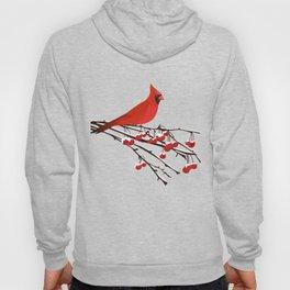 AFE Red Cardinal Hoody