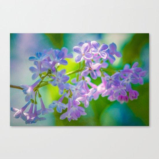 Purple Lilac Flowers Canvas Print