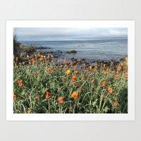 Orange blooms along the Pacific Art Print