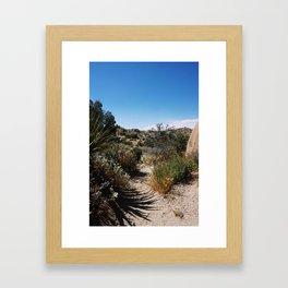 The Lushness of Joshua Tree Framed Art Print
