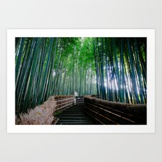 Serendipity In Kyoto Art Print