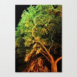 The Secret Haven of Tisiphone Canvas Print