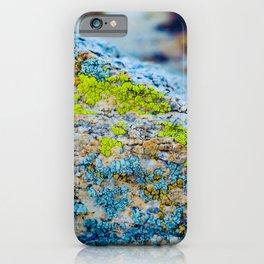 Hyper Lichen on Cool Desert Rock iPhone Case